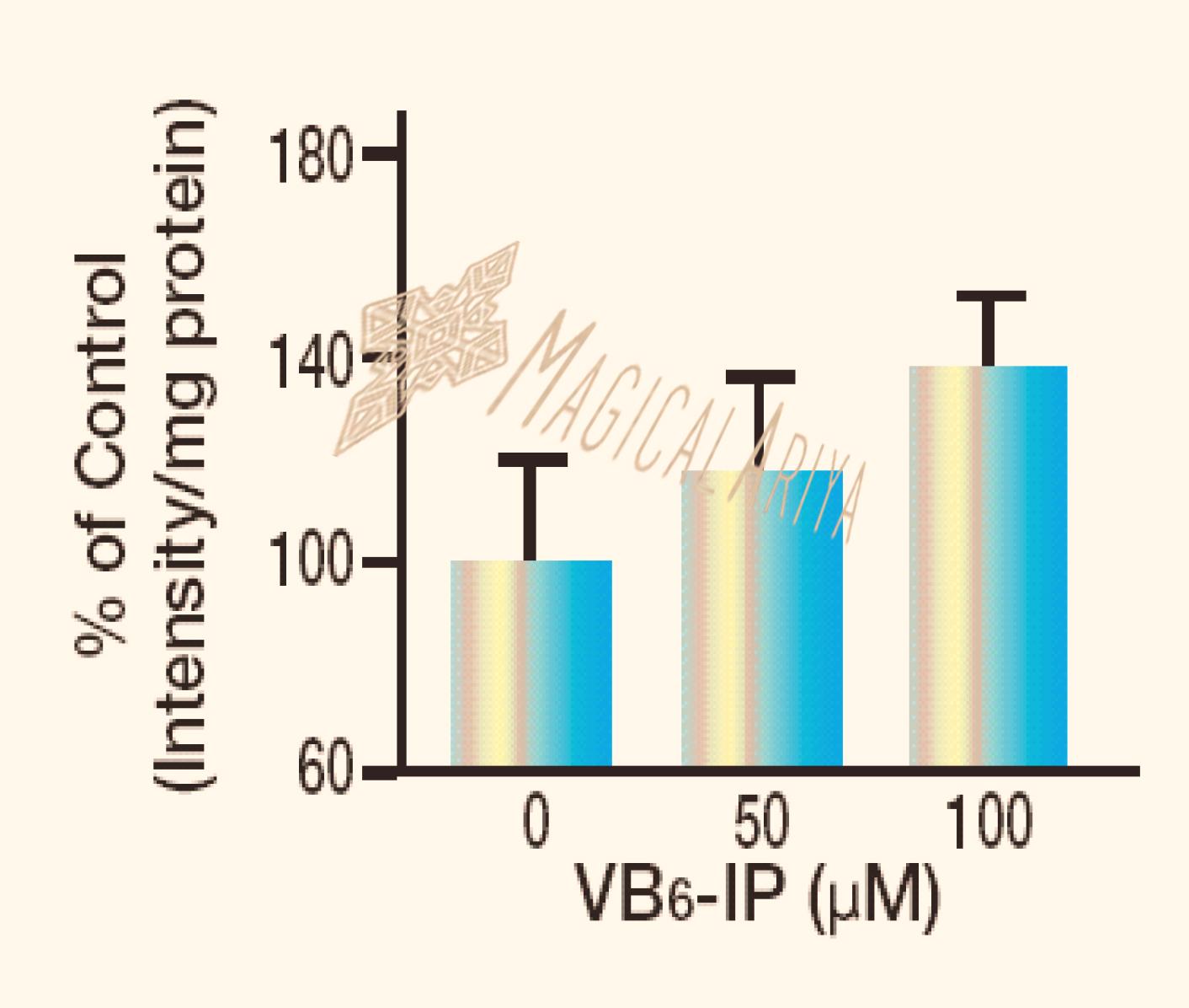 VB6-IP                            R2Untitled-1